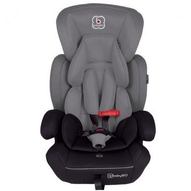 Automobilinė kėdutė ProTect  9-36 kg 9