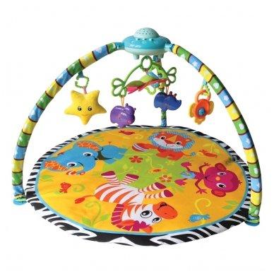 Lavinamasis kilimėlis su projektoriumi