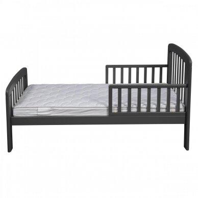 Paaugusio vaiko lova Anna 140*70cm Grey 3
